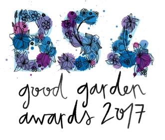 2017 logo design