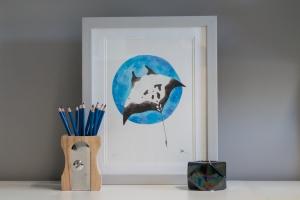 Manta print in frame