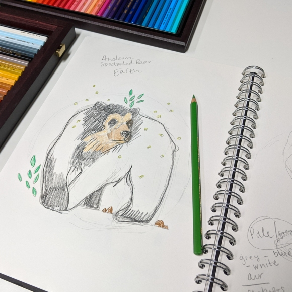 Sketch of an Andean spectacled bear in Jem's sketchbook, surrounded by coloured pencils on the desk in her home studio in Bristol, UK